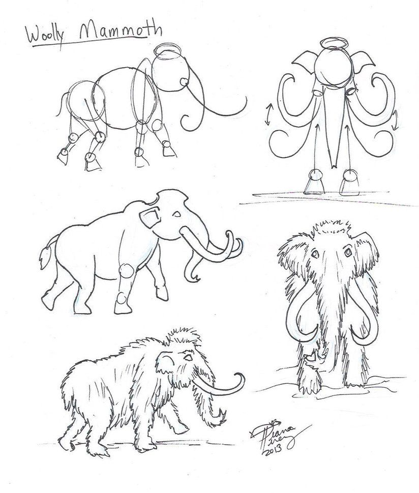 Draw A Woolly Mammoth By Diana Huang Desenhos Tutoriais Cores