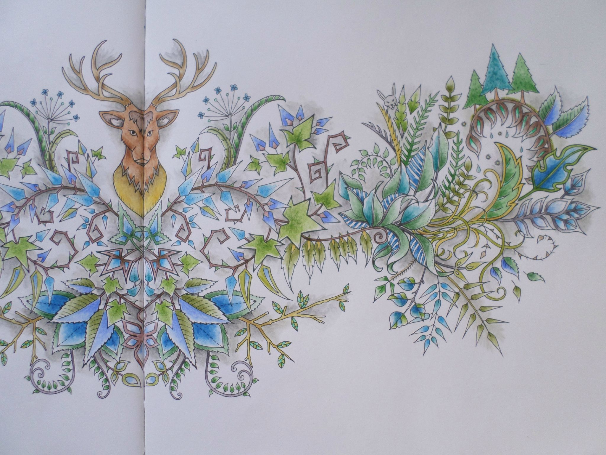 Coloriage livre Forªt Enchantée Johanna Basford par steffy Elsass crea