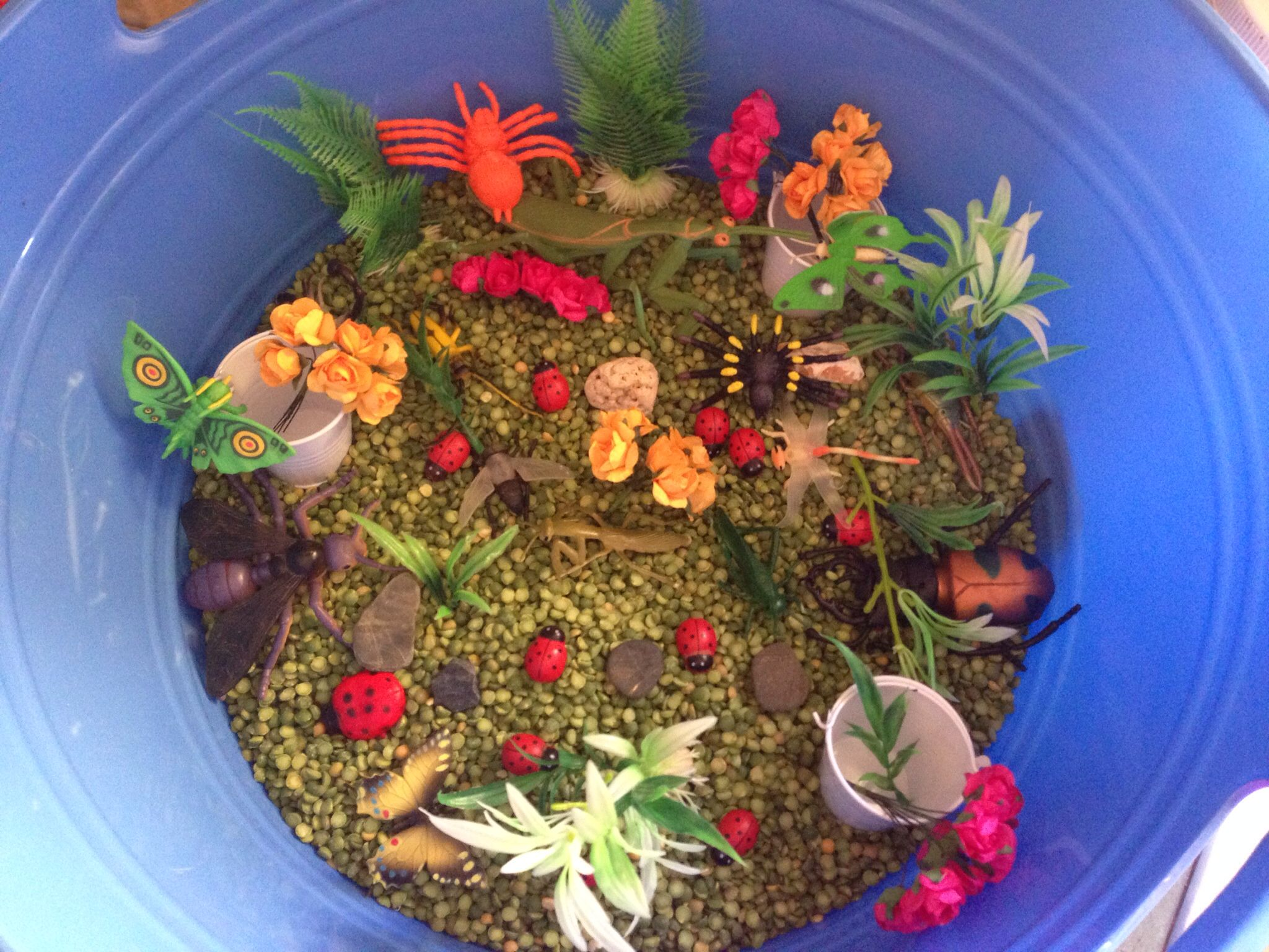 Garden/ insect sensory play with split peas | sensory play at home ...