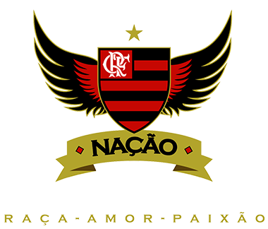 PORTAL JORGE GONDIM  ESPORTES - Flamengo alcança melhor média de  públic...Rubro-Negro alcançou a melhor média de público do Brasileirão a96162dad1084