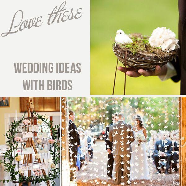 Love bird wedding theme ideas theme ideas wedding bird cages and love bird wedding theme ideas junglespirit Choice Image