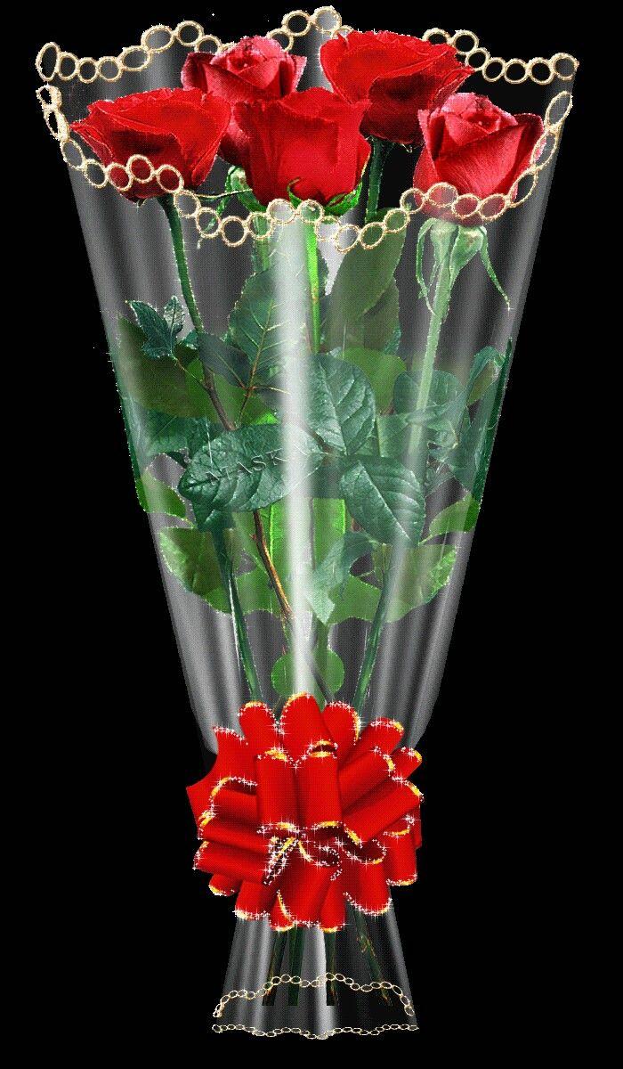 Pin by Jolanta kanarek on Kwiaty   Piękne róże, Róża, Róże