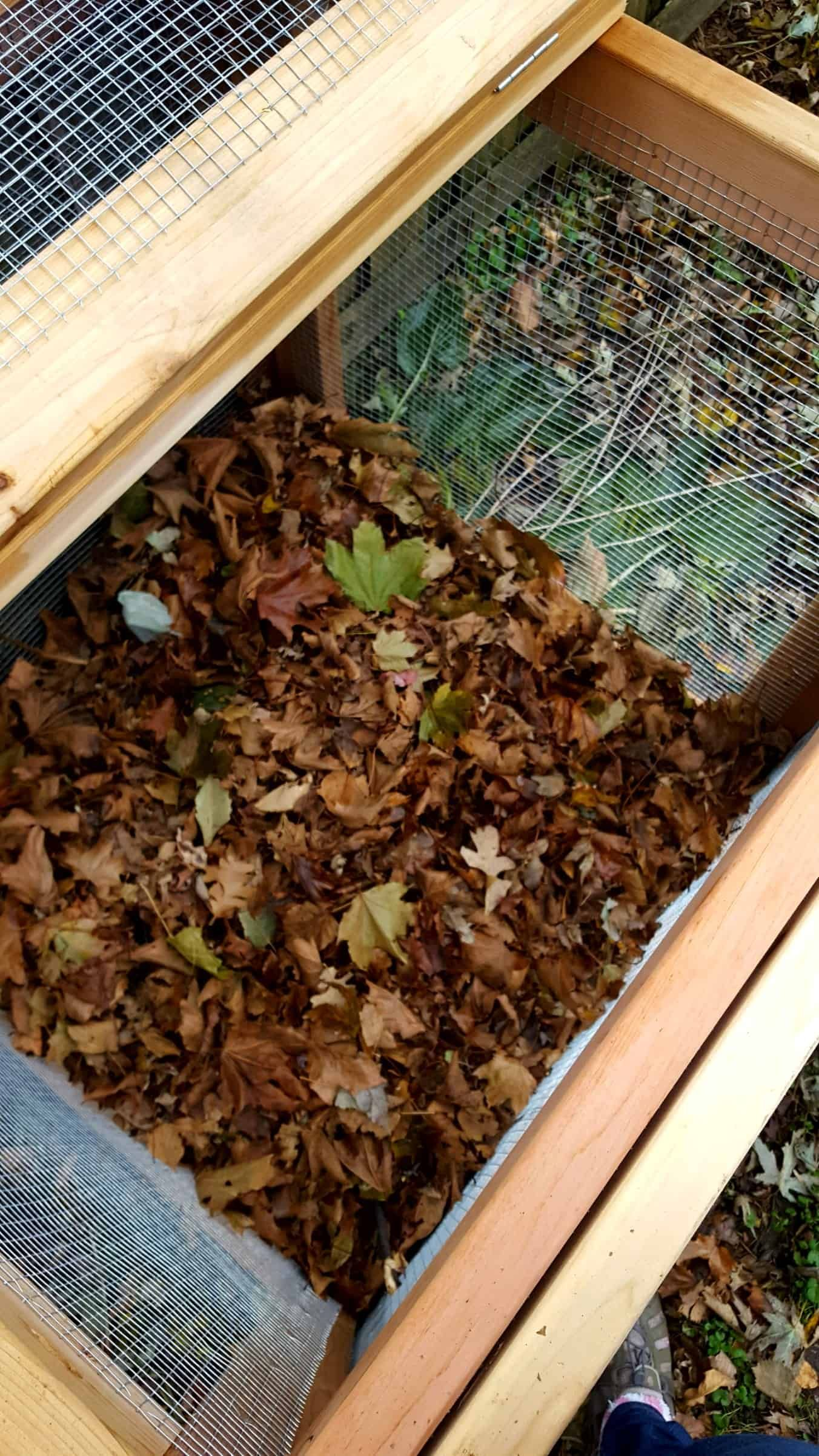 The Ultimate Guide To Composting In Any Sized Space