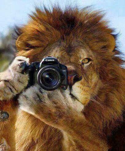 Facciamo una foto
