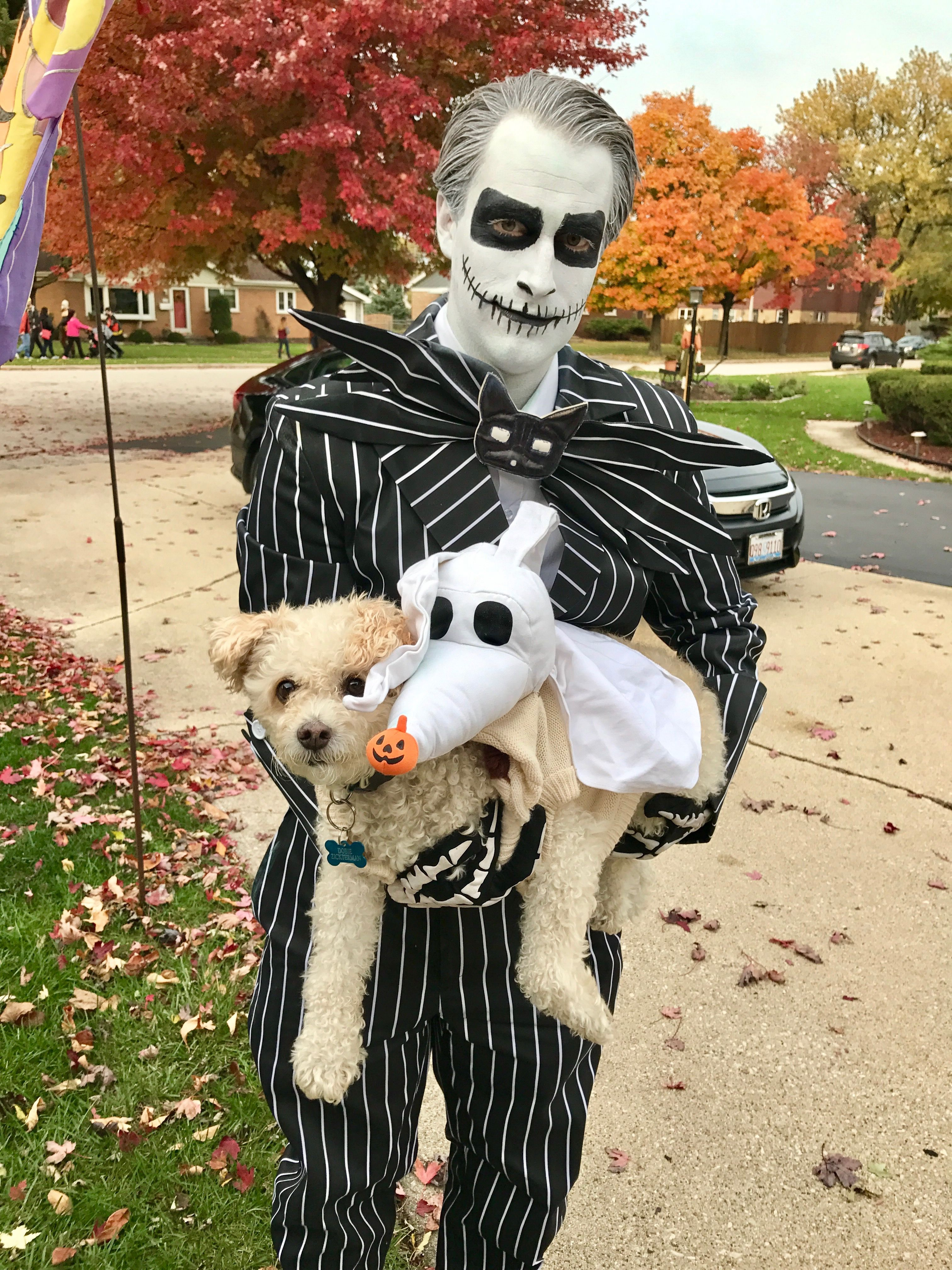 Jack and his dog Zero from The Nightmare Before Christmas ...