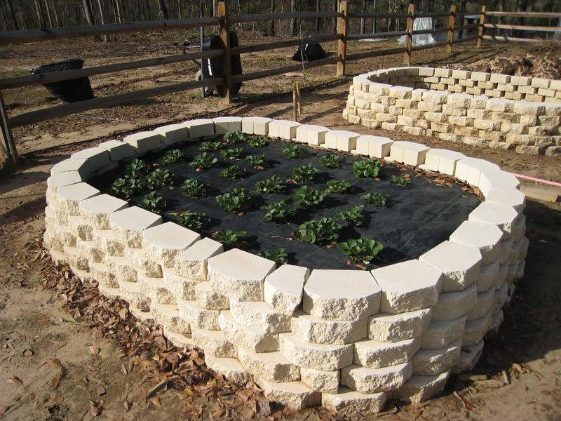 Garden Blocks. Above Ground Gardens. Cinder Blocks. Garden Blocks