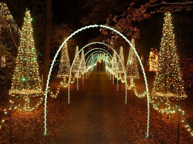 1adfa52c4305ab34bd339b469a03eeb0 - Garvan Gardens Hot Springs Christmas Lights