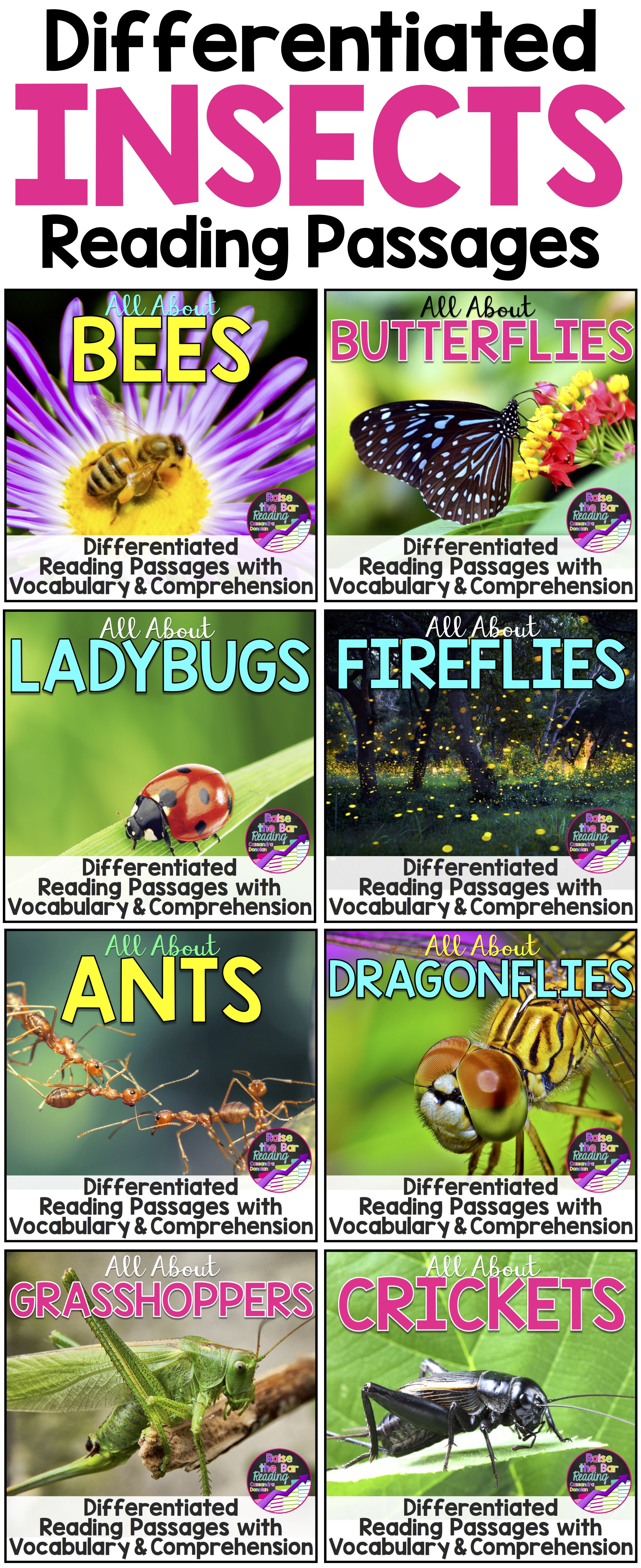 Differentiated Insects Reading Passages Comprehension Amp Vocabulary Activities