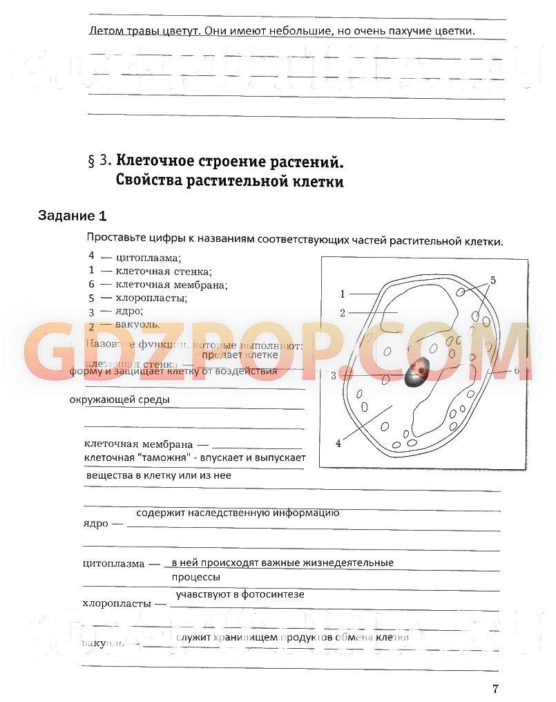 Календарно-тематическое планирование биологии 8 классе автор пономарева