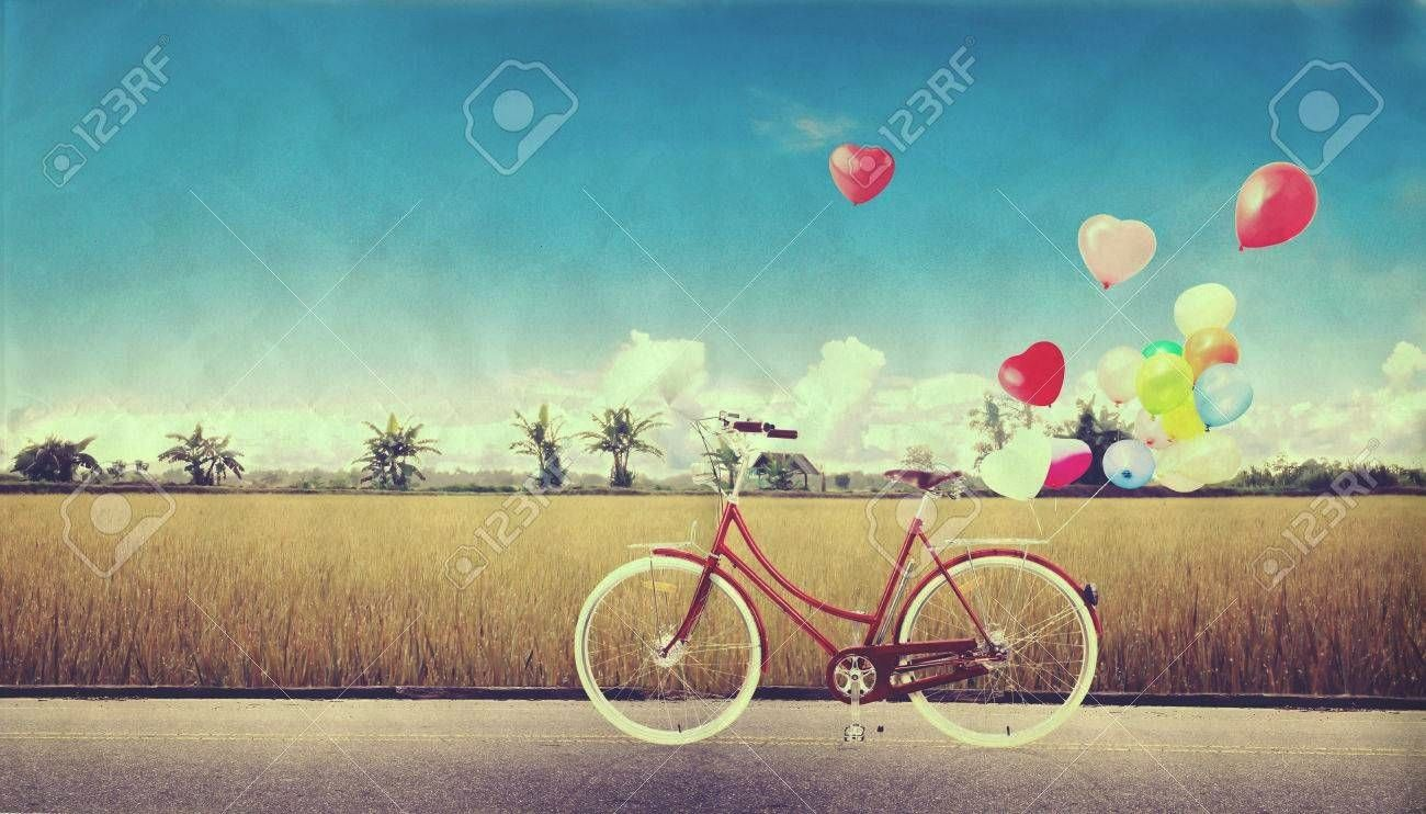 vintage with heart balloon on farm field and blue sky concept of love in summer and wedding honeymoon bicycle vintage with heart balloon on farm field and blue sky concep...