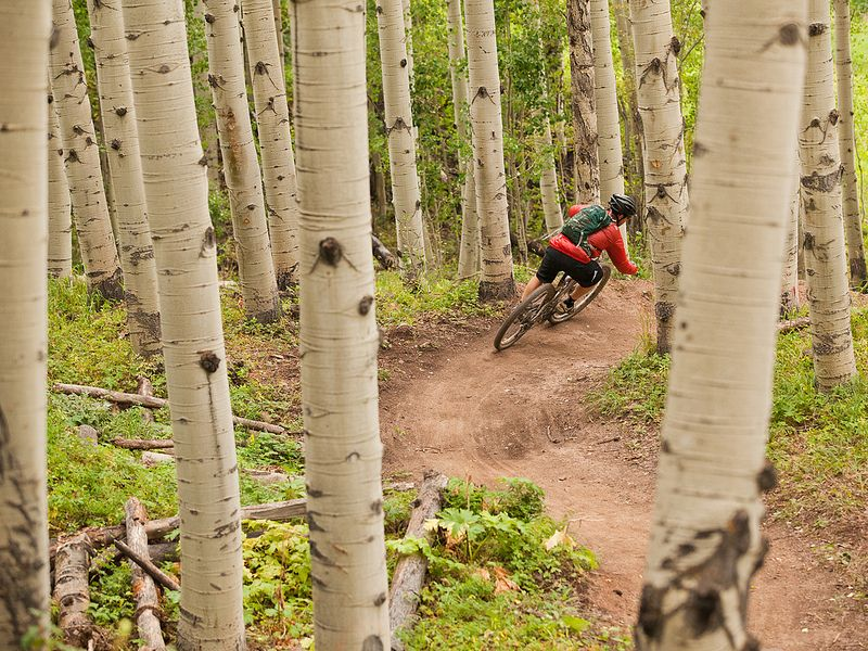 15 Mountain Bike Tips For Beginners Mountain Bike Trails