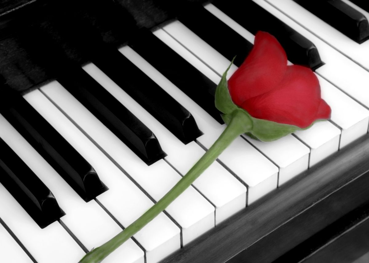 Piano With Roses Wallpapers Via Wallsave