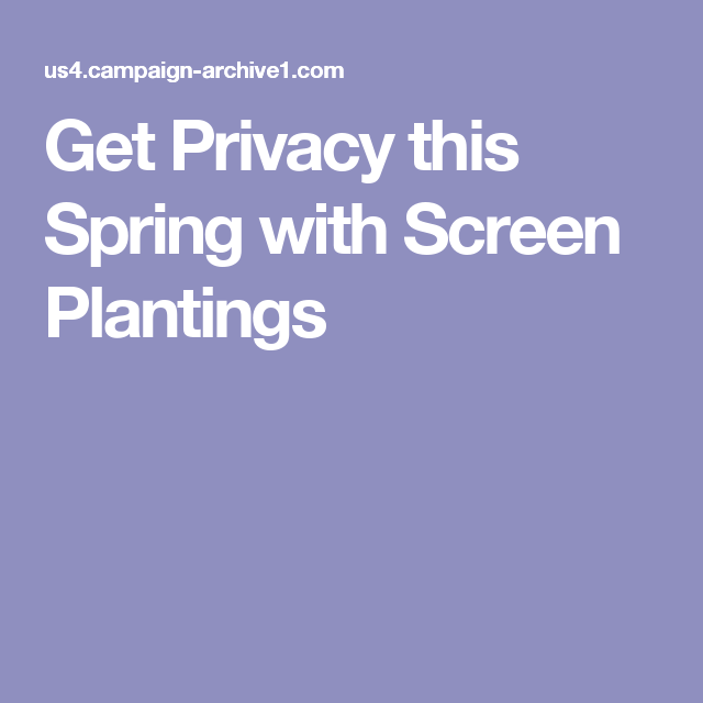 Get Privacy this Spring with Screen Plantings