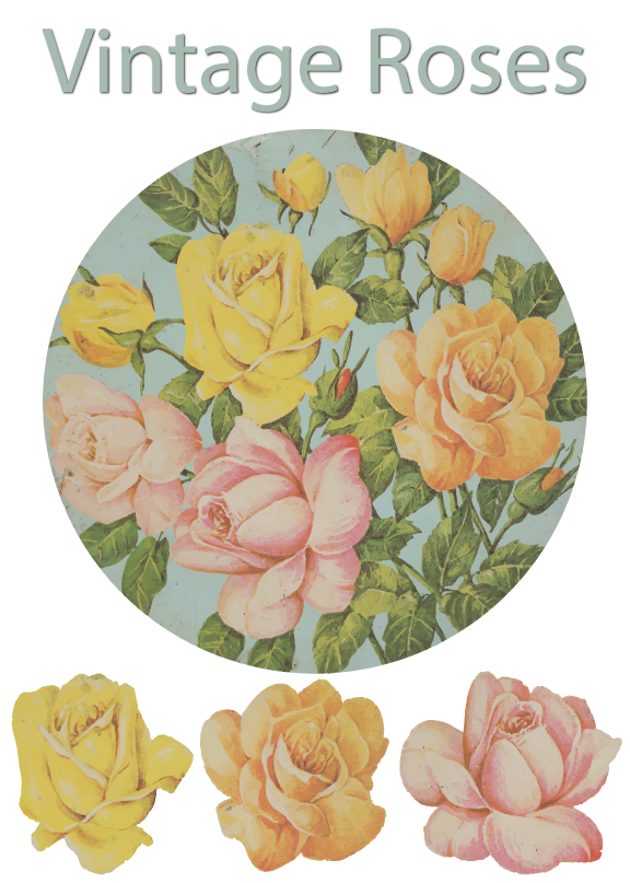 Vintage Roses Free Symbols For Use In Adobe Illustrator Art And