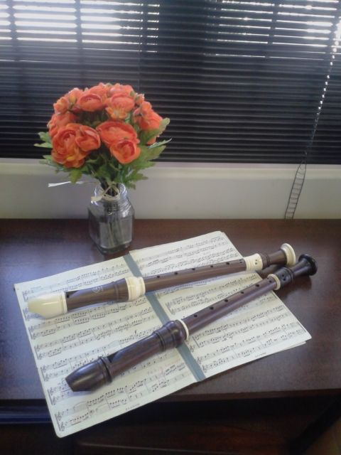 I love my recorders!  https://my.wealthyaffiliate.com/christine2/blog/what-has-music-gotto-do-with-promoting-wealthy-affiliate/a_aid/a35cf7c1