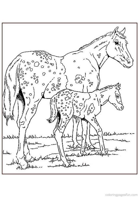Horse Coloring Pages 65 | Animal coloring pages | Pinterest ...