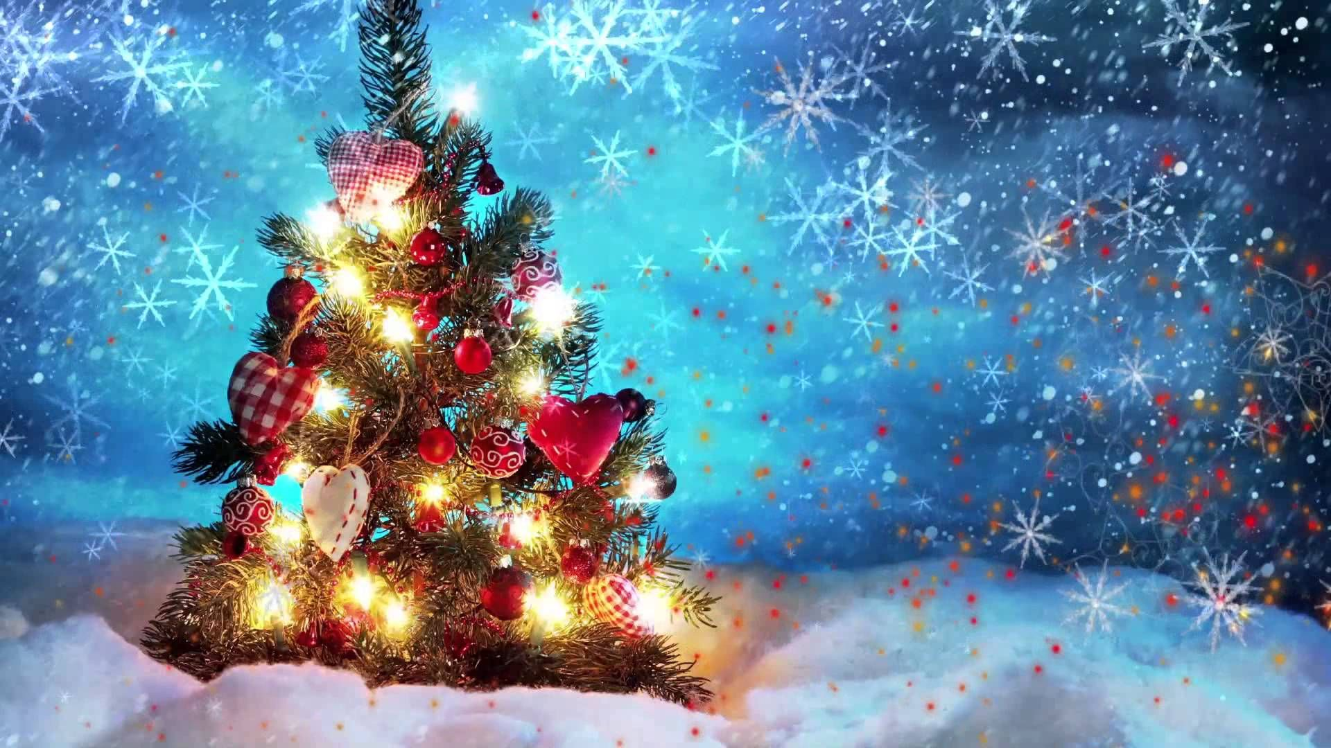 Christmas Animated Video Background Loop Christmas Desktop Wallpaper Christmas Tree Wallpaper Cute Christmas Tree