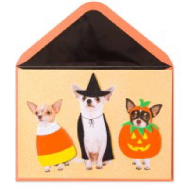 did someone say treats card for halloween - What To Say In A Halloween Card