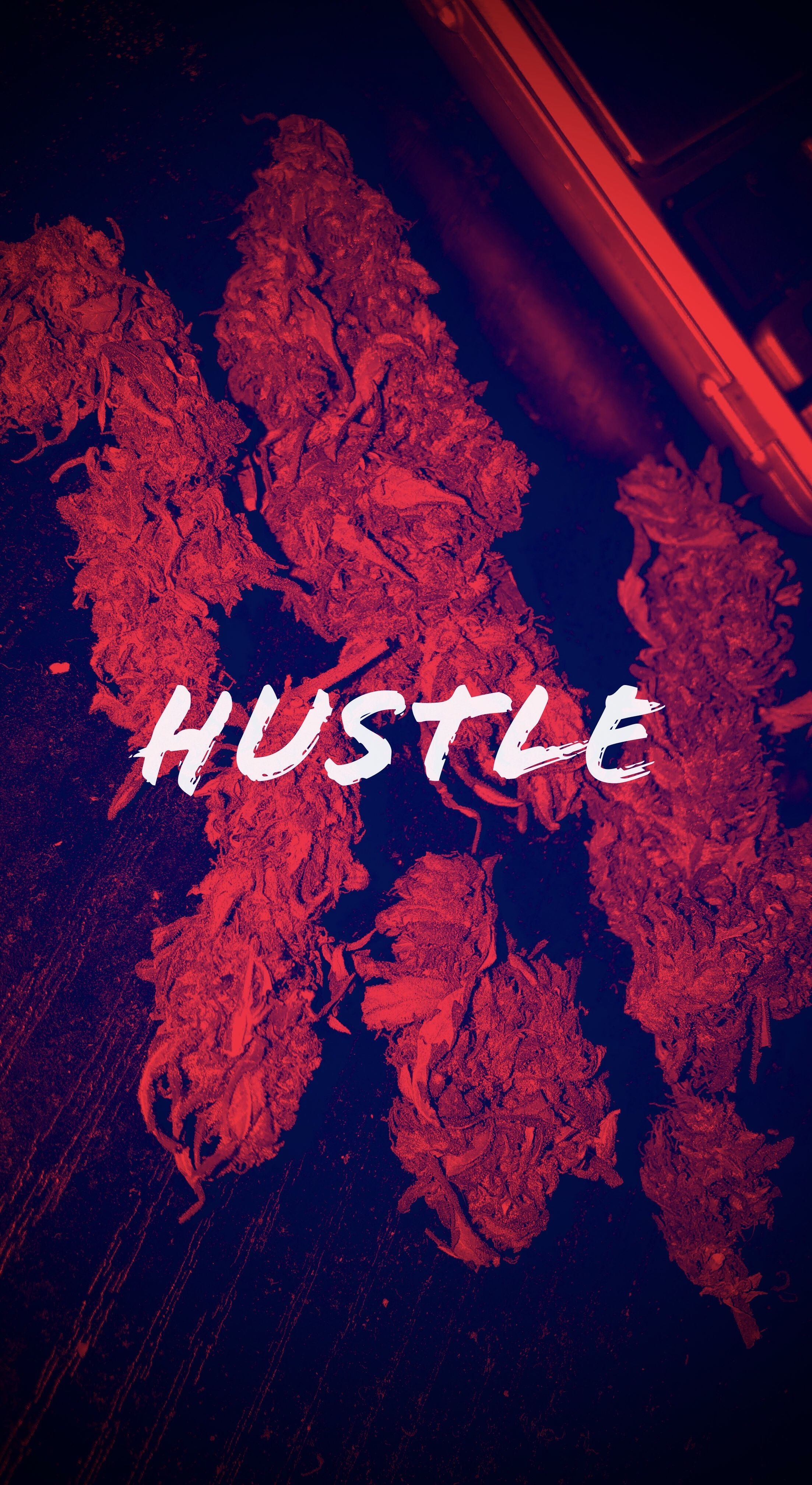Hustle Wallpaper Buds Thug Life Wallpaper Hustle Quotes Words Wallpaper Get inspired for dope hd wallpaper for