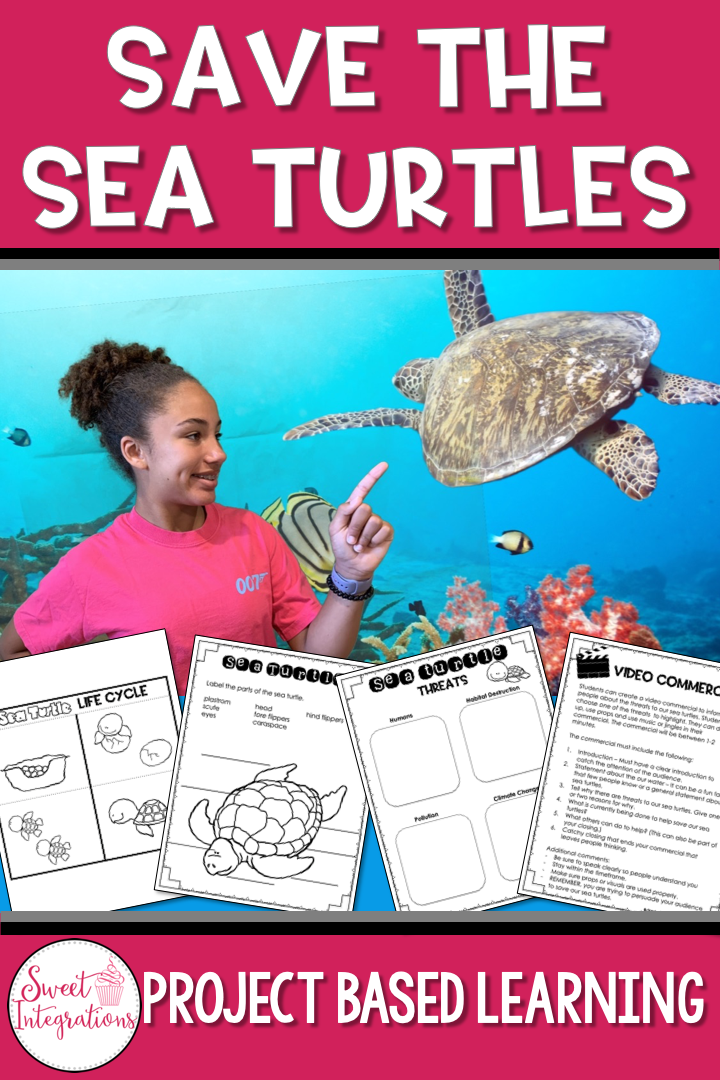 Sea Turtles Project Based Learning Science Conservation