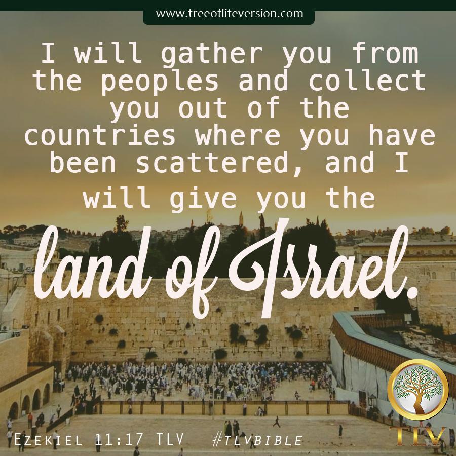 Ezekiel 11 17 Tlv Tlvbible Bible Society Bible Topics