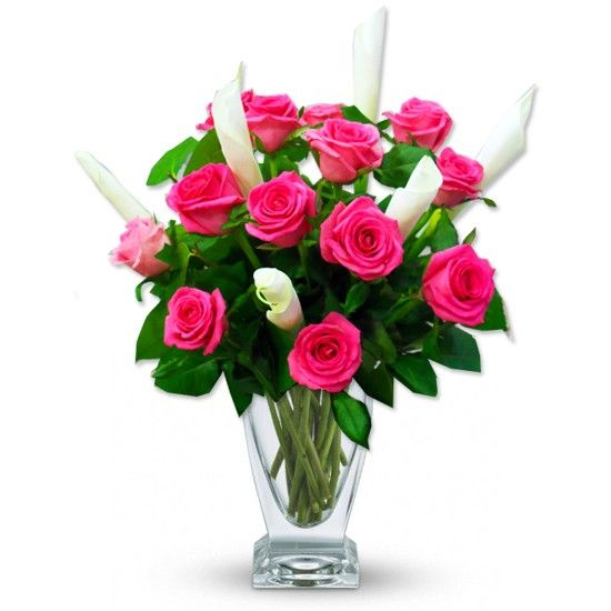 Send this special bouquet to your friends in Egypt use this 10 ...