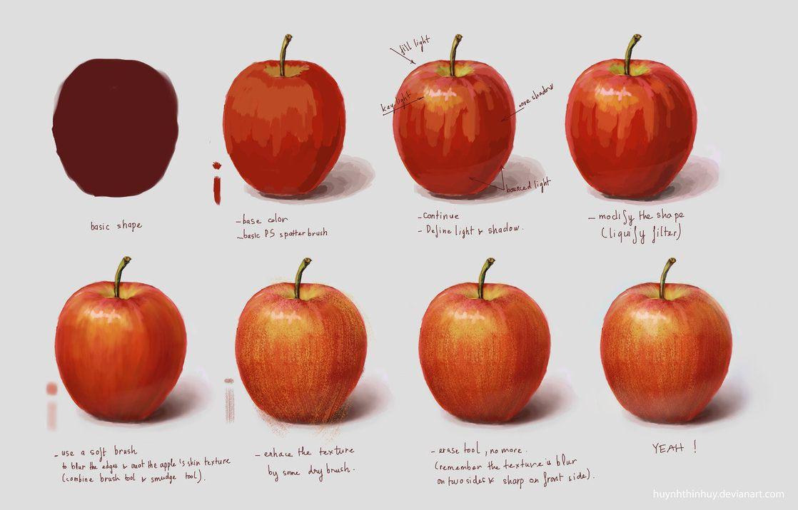 Study Fruit Apple by HuynhThiNhuY   ARTsy   Pinterest   Anatomía ...