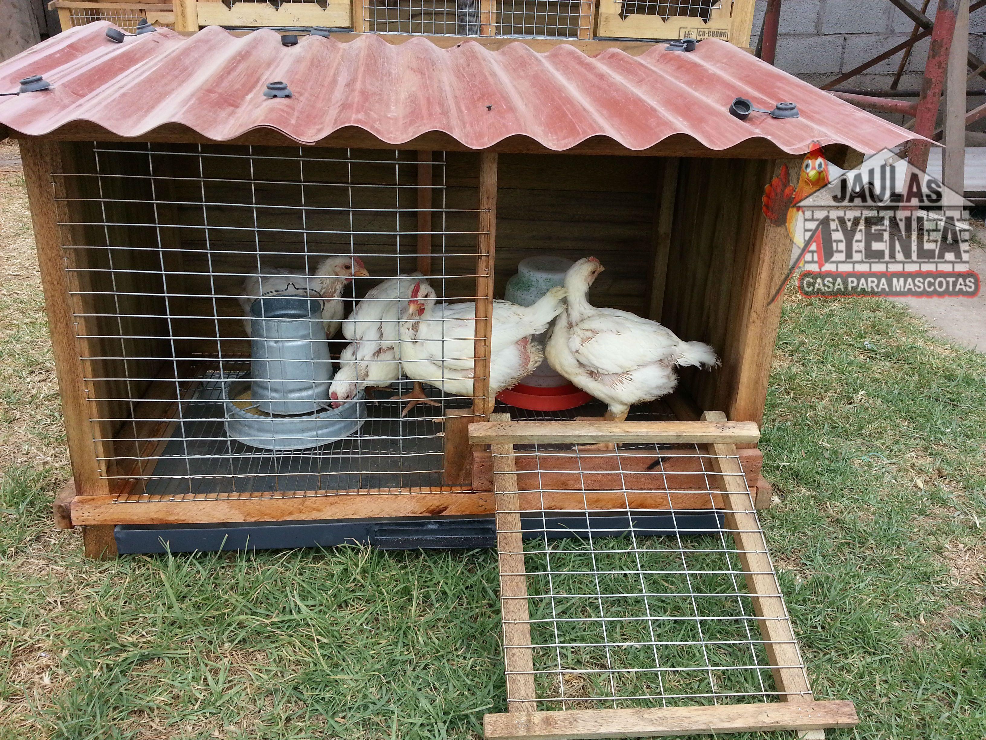Casa para pollos casas para conejo pinterest - Gallineros de obra ...