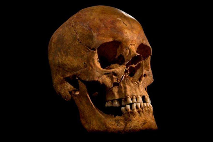 Luut paljastavat: Rikhard III söi ja joi kuin kuningas   Tiede