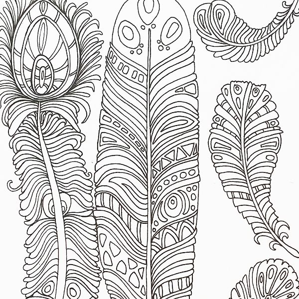 A page of gorgeous feathers from colour me calm adult colouring book by art therapist lacy mucklow