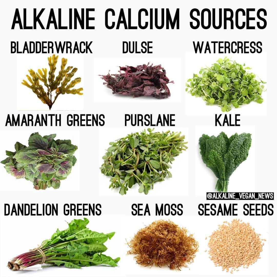 "Alkaline Vegan Shop on Instagram: ""To purchase Sea Moss and"