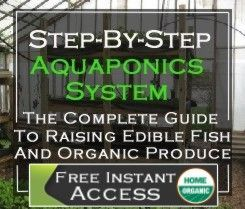 Commercial aquaponics and aquaponics business plans gardening commercial aquaponics and aquaponics business plans flashek Gallery