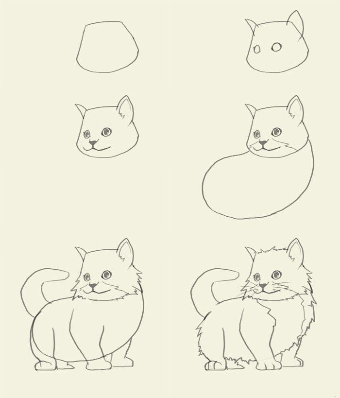 how to draw kitten | Easy desenhar-Eyes | Pinterest | Drawings