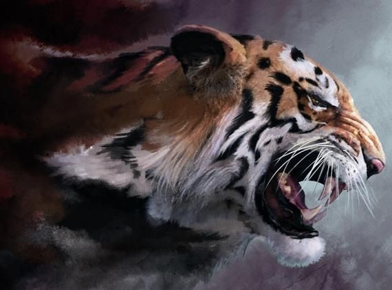 USA Seller. Tiger – Paint by Number Kit. DIY. Fast Shipping