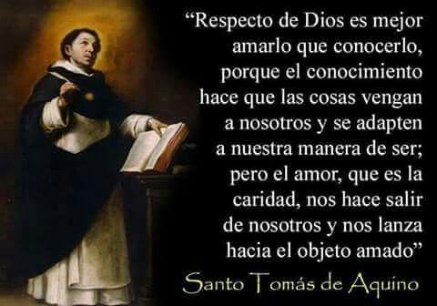 13 Ideas De 5 Thomas De Aquino Santo Tomas De Aquino Santo Tomas Frases De Santos