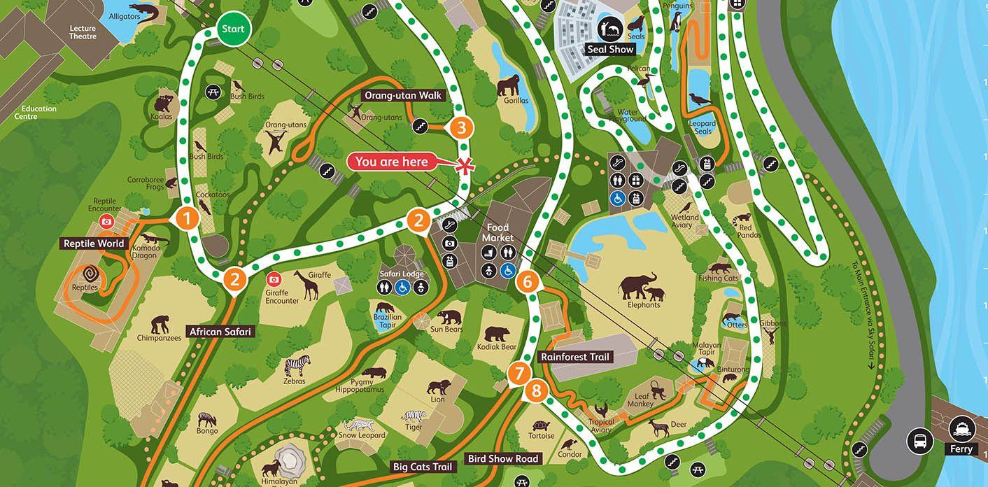 Taronga Zoo Sydney 2009 Dot Dash Zoo Map Zoo Map Artwork