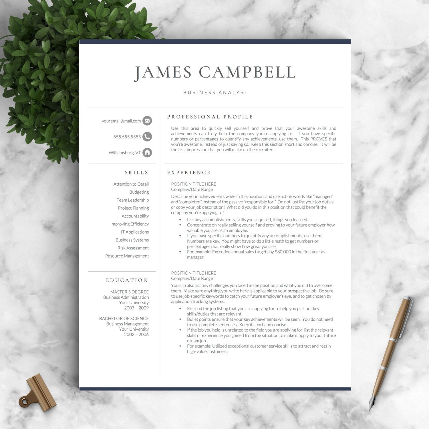 Professional Resume Templates For Word And Von Landeddesignstudio