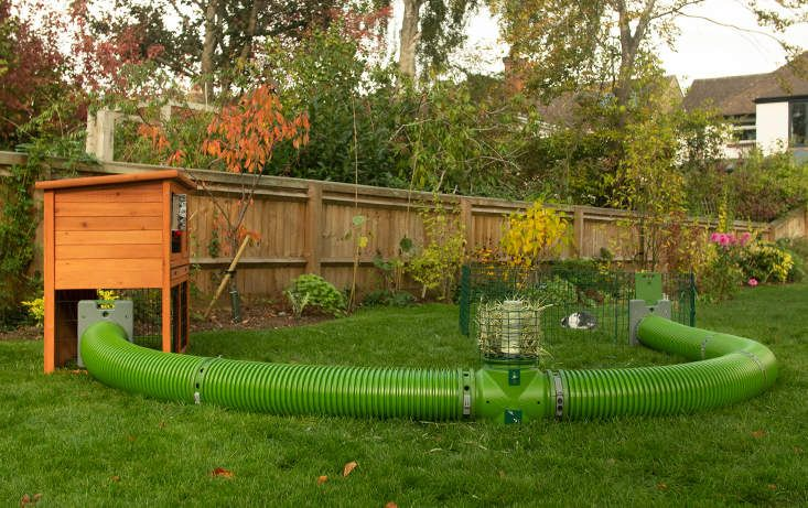 Zippi Tunnel Single with Hutch to Run Connection Kit - Rabbit tunnel, Guinea pig run, Guinea pigs, Rabbit hutches, Rabbit garden, Rabbit enclosure - Connect Your Hutch To A Larger Run     Read More…                The Zippi Tunnel allows you to connect your hutch to a larger run or playpen                                  Connect Your Hutch To A Larger Run                 The most popular use of the Zippi rabbit tunnel system is to connect your existing rabbit hutch (including wooden hutches or Eglu Go rabbit hutches) to a large rabbit run which can be anywhere in your garden  It's quick and simple to do, all fixings are supplied for you to attach a Zippi connection frame to the side of your rabbit hutch and then clip on lengths of the rabbit tunnel  The frame measures 12 2in high by 9 8in wide and is designed to fit any make and model of rabbit hutch          Provide your Bunny with an Active Habitat The Zippi Tunnel allows your rabbit to have safe and secure access to an exercise space whenever it wants through its very own Zippi burrow system  This is an amazingly convenient way for you to provide your pet with a habitat that promotes an active lifestyle, with the benefit of a more relaxed and healthier rabbit  Discover the amazing difference a Zippy tunnel system makes to you and your rabbit  Each tunnel section measures 35 4in in length and has an inner diameter of 7 1in
