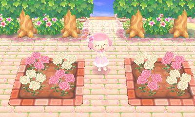 Animal Crossing Inspiration Vandoriaforest Very Happy With My New Flower Animal Crossing Animal Crossing 3ds Animal Crossing Qr