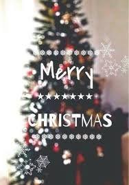 Elegant Resultado De Imagen Para Christmas Tree Tumblr Photography