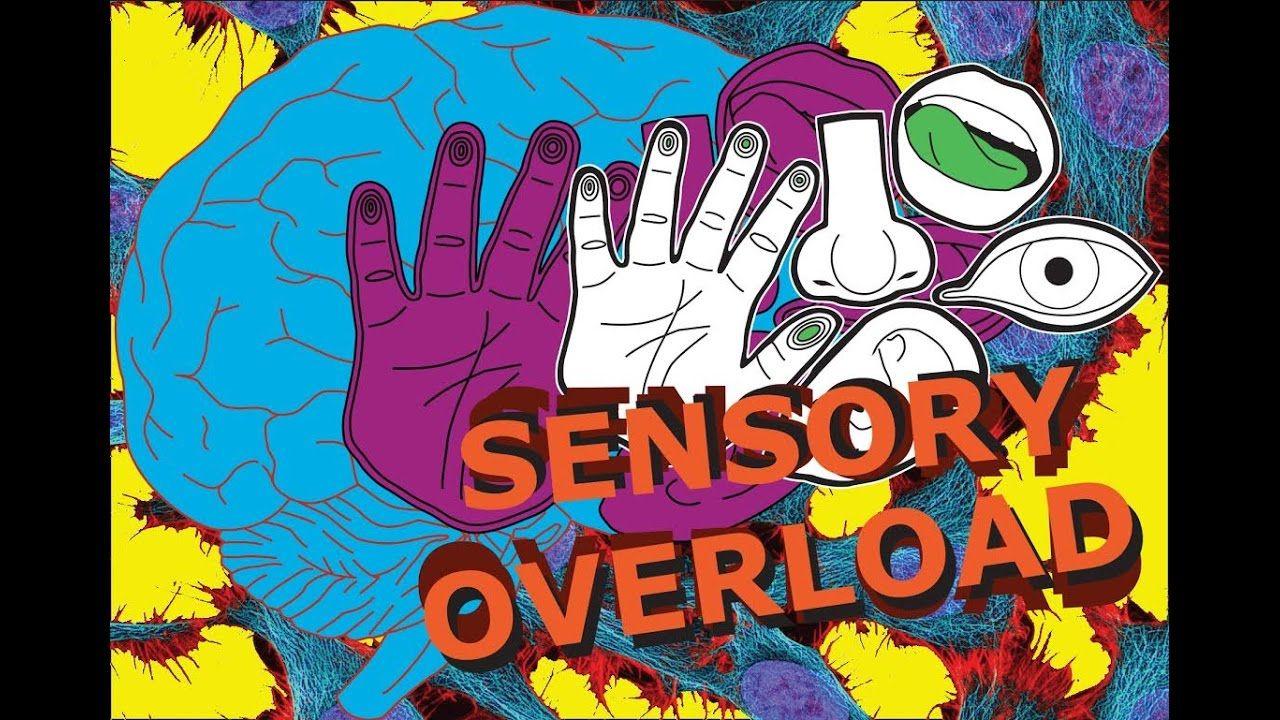 Sensory Overload!