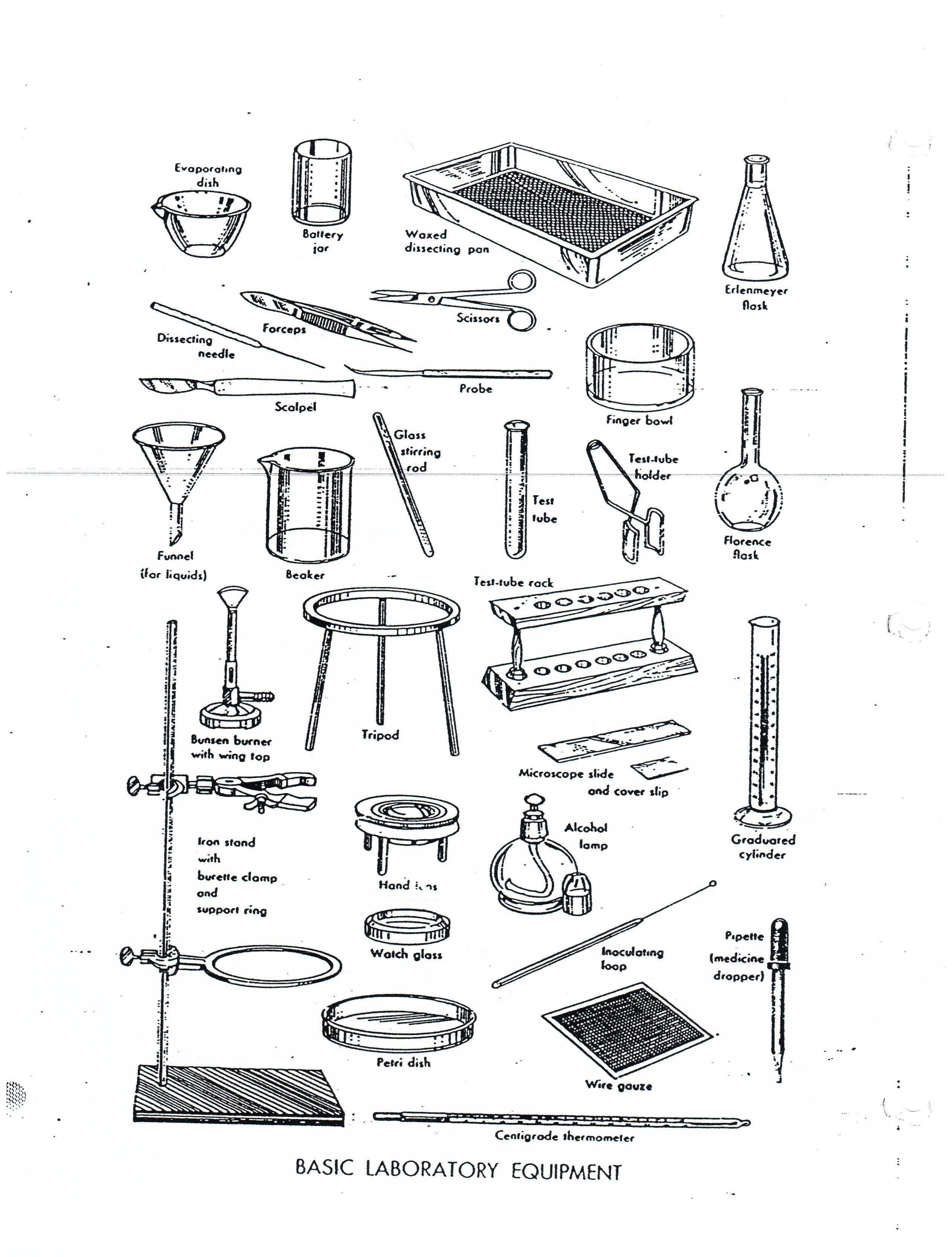 School Chemistry Lab Equipment Names Con Imagenes