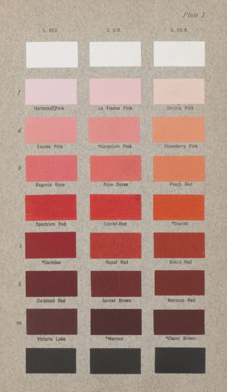 How Red Is Dragon\'s Blood? | color | Pinterest | Display, Wall ...