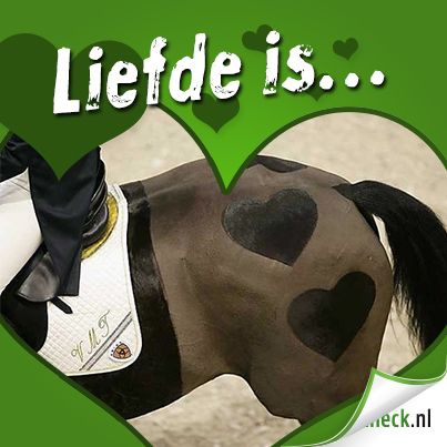 Liefde is... www.horsecheck.nl