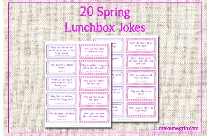 Awesome SPRING Lunchbox Jokes Notes!