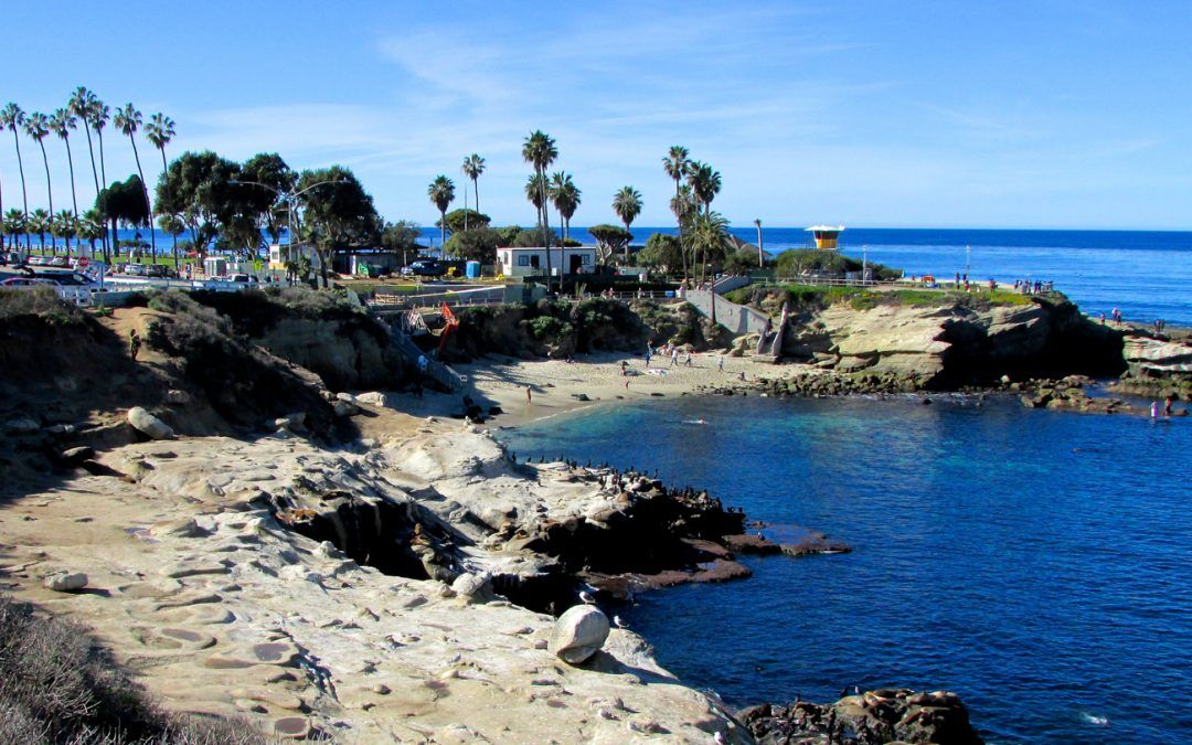8 Things You May Not Know About La Jolla Cove