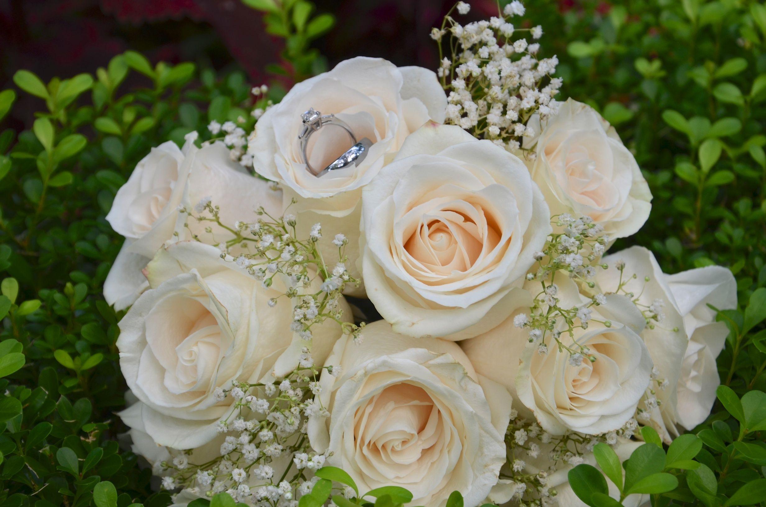 White rose bouquet... simple yet elegant | Wedding ...
