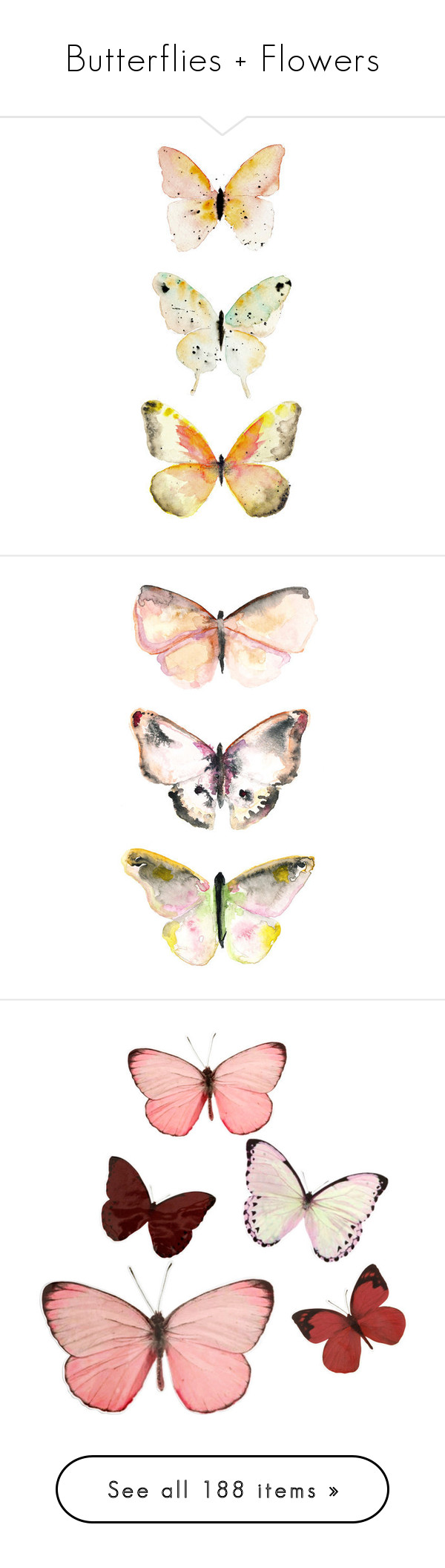 Butterflies Flowers By Intanology Liked On Polyvore Featuring Home Decor Butterfly DrawingButterfly Wall