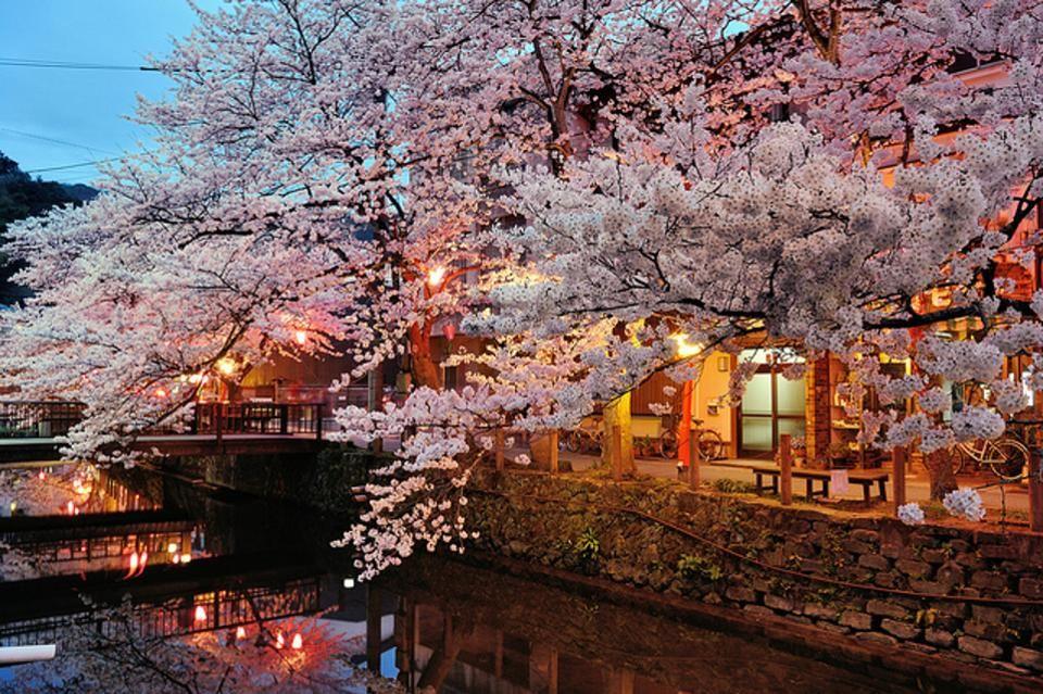 Kinosaki Onsen Japan S Hidden Gem For Spa And Food Lovers Onsen Japanese Hot Springs Japan