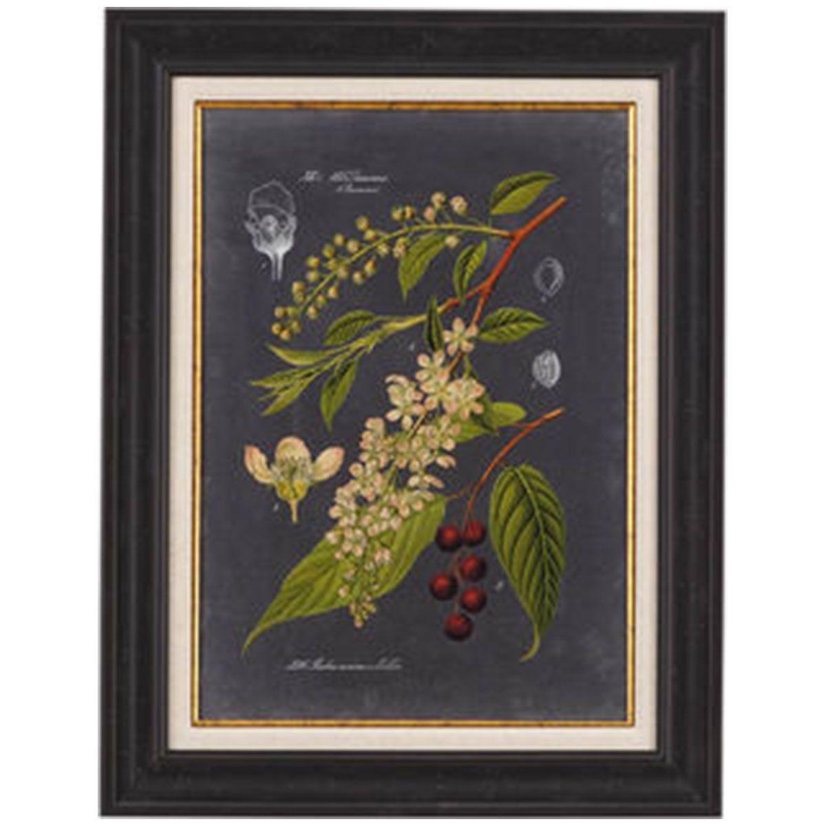 Bassett Mirror Midnight Botanical Ii 9900 231bec Floral Wall Art Wall Art Prints Graphic Art Print